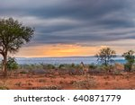 golden sunrise in the african... | Shutterstock . vector #640871779