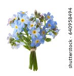 small bouquet of  forget me... | Shutterstock . vector #640958494