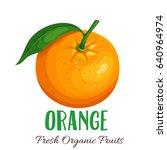 Vector Orange. Fruit...