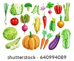 watercolor vegetables. tomato... | Shutterstock .eps vector #640994089