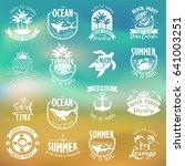 summer typography design... | Shutterstock .eps vector #641003251