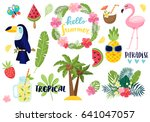 a set of summer elements ... | Shutterstock .eps vector #641047057