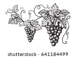 set of grapes monochrome sketch.... | Shutterstock .eps vector #641184499