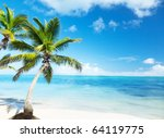 palm and beach | Shutterstock . vector #64119775
