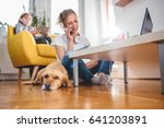 Stock photo small yellow dog laying on the floor by the woman who is talking on the smart phone 641203891
