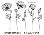 california poppy flowers drawn... | Shutterstock .eps vector #641204545