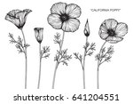 california poppy flowers drawn... | Shutterstock .eps vector #641204551
