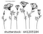 california poppy flowers drawn... | Shutterstock .eps vector #641205184