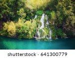 beautiful summer forest... | Shutterstock . vector #641300779