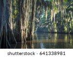 misty morning swamp bayou scene ...   Shutterstock . vector #641338981
