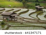 step of terraced rice field and ... | Shutterstock . vector #641347171