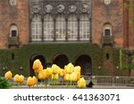 Yellow tulips against the backdrop of an old brick building - stock photo