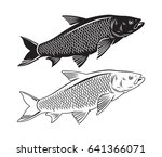 the figure shows the fish chub | Shutterstock .eps vector #641366071