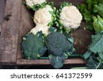 view of organic broccoli and... | Shutterstock . vector #641372599