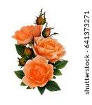 red rose flowers bouquet... | Shutterstock . vector #641373271