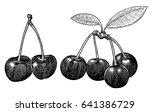 cherry illustration  drawing ... | Shutterstock .eps vector #641386729
