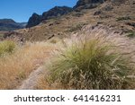 hiking trail on gran canaria... | Shutterstock . vector #641416231