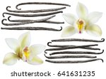 vanilla flower stick element... | Shutterstock . vector #641631235