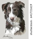 Border Collie Vector Hand...