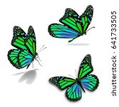 beautiful three monarch... | Shutterstock . vector #641733505