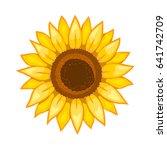 sunflower. isolated flower on... | Shutterstock .eps vector #641742709