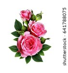 pink rose flowers bouquet... | Shutterstock . vector #641788075