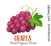 vector grapes . fruit berry... | Shutterstock .eps vector #641794081