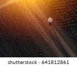 farmer using drone in sugar... | Shutterstock . vector #641812861