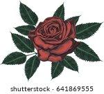 red rose   vector art | Shutterstock .eps vector #641869555