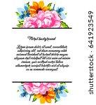 vintage delicate invitation... | Shutterstock . vector #641923549