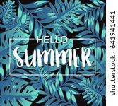 hello summer banner with... | Shutterstock .eps vector #641941441