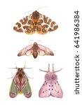 watercolor illustrations...   Shutterstock . vector #641986384