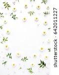 flower frame with chamomile... | Shutterstock . vector #642011227