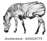black and white monochrome... | Shutterstock . vector #642024775
