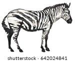 black and white monochrome... | Shutterstock . vector #642024841