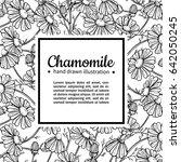 chamomile vector drawing frame. ... | Shutterstock .eps vector #642050245
