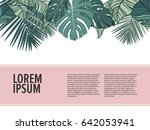 tropic leaves background with... | Shutterstock .eps vector #642053941