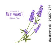 label with lavender. bunch of... | Shutterstock .eps vector #642074179