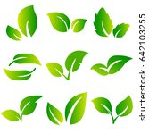 leaves icon vector set isolated ... | Shutterstock .eps vector #642103255