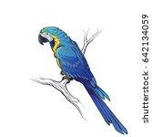 blue macaw parrot ara...   Shutterstock . vector #642134059