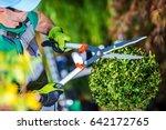 Gardener Trimming Plants....