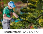 Topiary Gardener Plant Shaper at Work. Professional Gardener in the Beautiful Garden Full of Fancy Trees. - stock photo