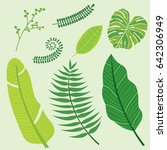 green plants tropical palm... | Shutterstock .eps vector #642306949