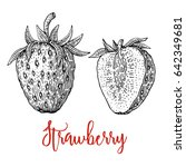 strawberry vector drawing.... | Shutterstock .eps vector #642349681