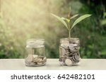 coins in the bottle with tree...   Shutterstock . vector #642482101