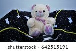 Small photo of A soft toy. A soft bear toy.