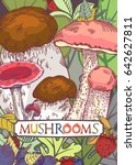 edible mushroom cover with... | Shutterstock .eps vector #642627811