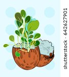 two eggshells with salad... | Shutterstock .eps vector #642627901