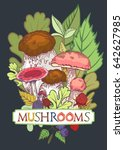 edible mushroom cover with... | Shutterstock .eps vector #642627985
