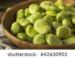 raw organic fresh green fava... | Shutterstock . vector #642630901